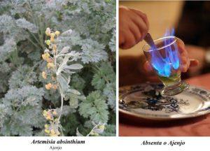 Vermut rojo y aperitivos italianos - Ajenjo