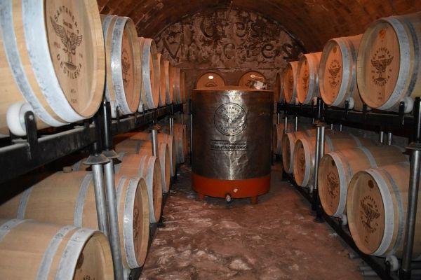 Tequila: Barricas de madera de roble y encino.